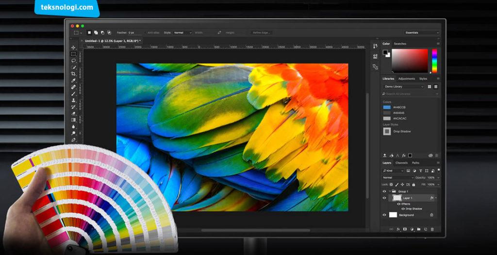 monitor desain grafis