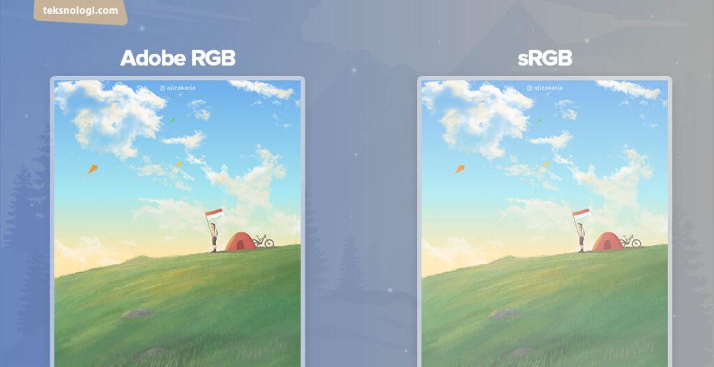 perbedaan adobe rgb dengan srgb