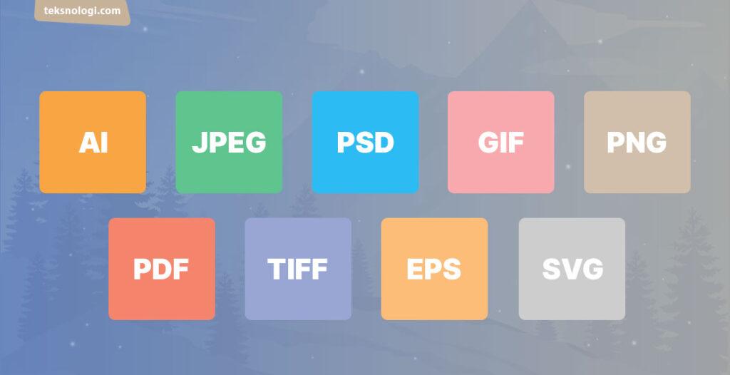 AI JPEG TIFF SVG EPS PNG GIF PDF PSD