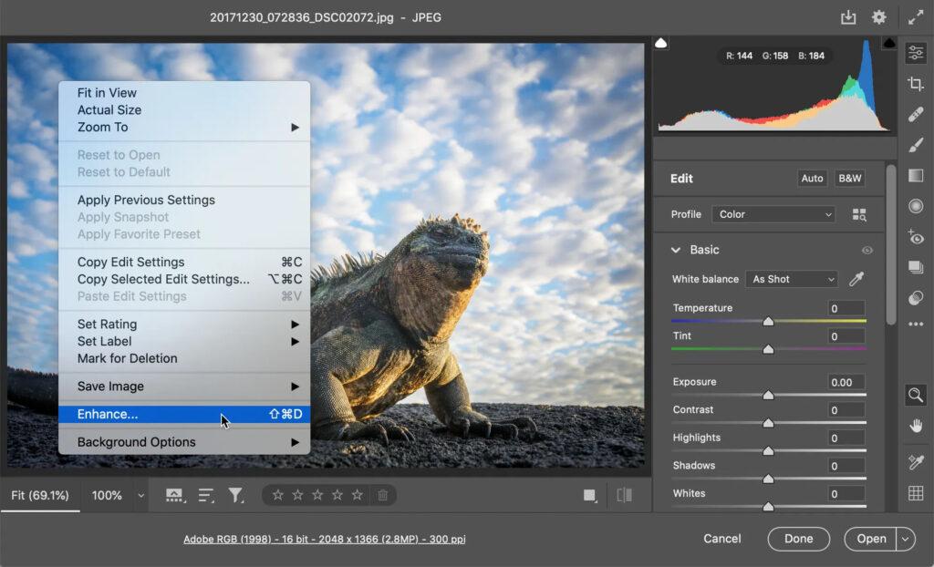 adobe-super-resolution-camera-raw-enhancement